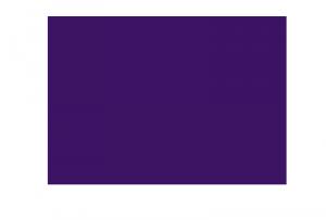 unoy-logo-banner